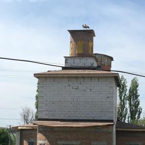 Аисты на крыше Церкви